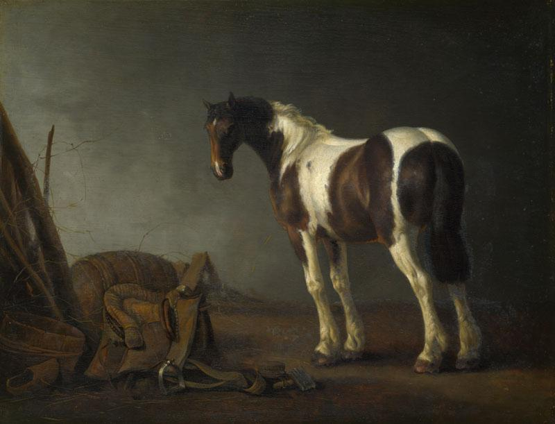 Abraham van Calraet - A Horse with a Saddle Beside it
