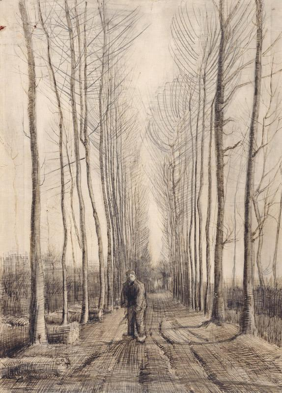 Avenue of Poplars