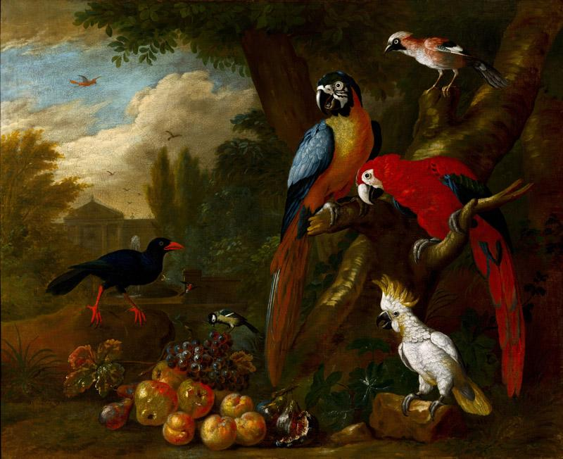 Bogdani, Jakob (1660 - 1724) (Hungarian)-Two Macaws, a Cockatoo and a Jay, with Fruit