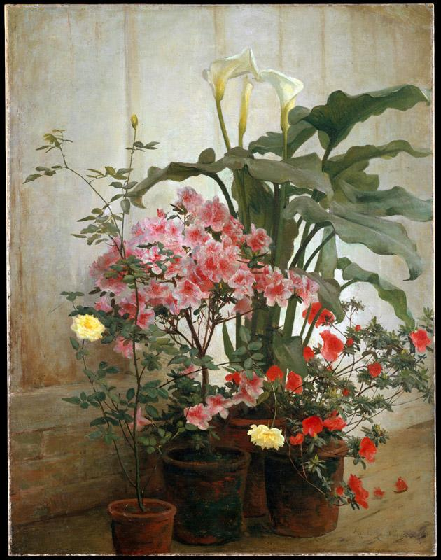 George Cochran Lambdin--Side of a Greenhouse