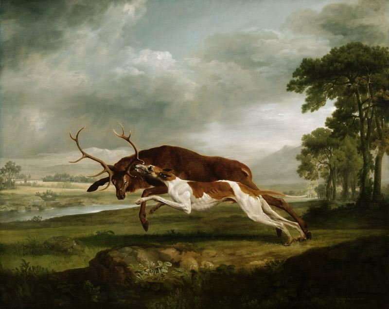 George Stubbs, English, 1724-1806 -- Hound Coursing a Stag