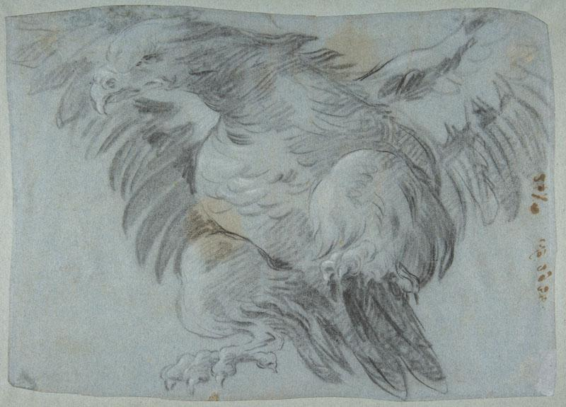 Giovanni Battista Tiepolo--An Eagle with Wings Spread