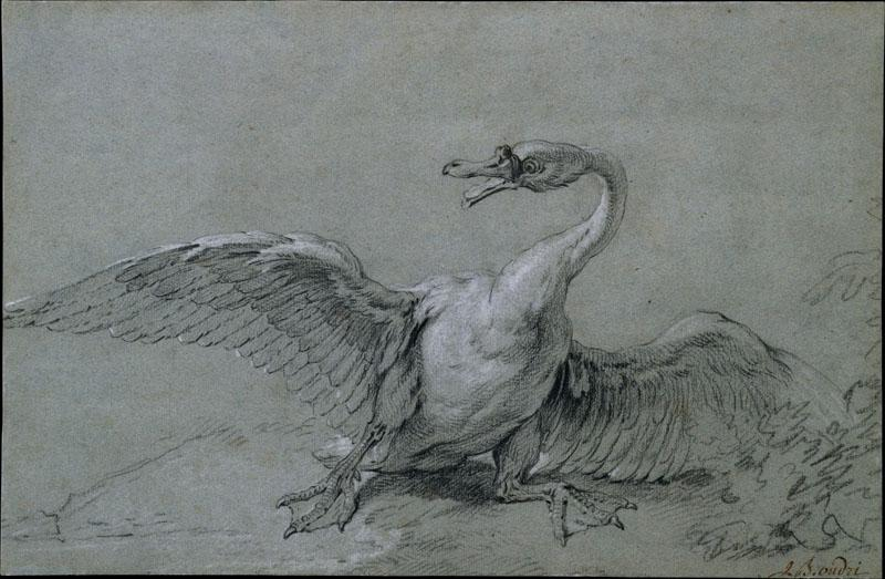 Jean-Baptiste Oudry--Angry Swan