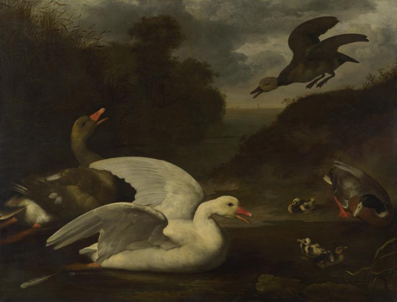Johannes Spruyt - Geese and Ducks