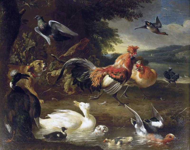 Melchior d Hondecoeter - Chickens and Ducks