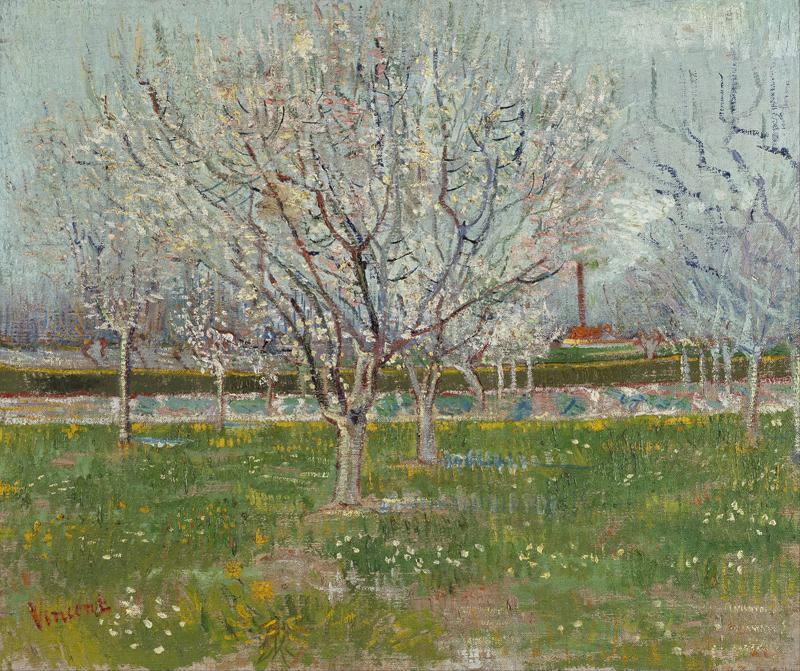 Orchard in Blossom2