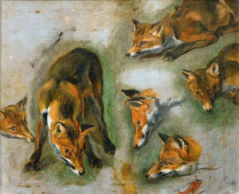 Pieter Boel (1622-1674) -- Views of a Fox