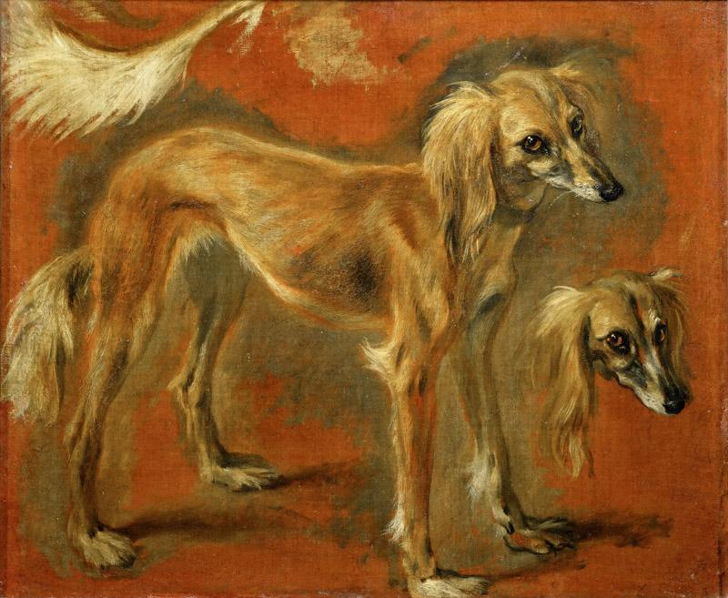 Pieter Boel (1622-1674) -- Views of a Greyhound