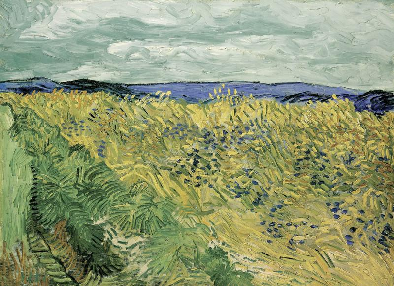 Wheat Field with Cornflowers
