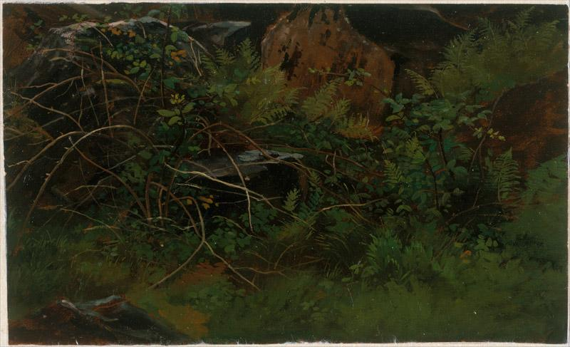 William Stanley Haseltine--Study from Nature